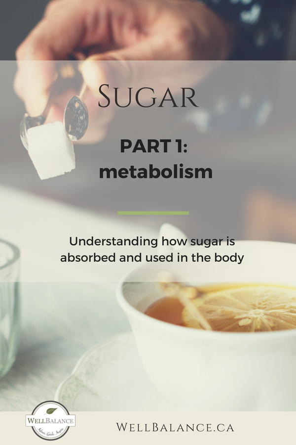Sugar Part 1: Metabolism. Understanding how sugar is absorbed and used in the body